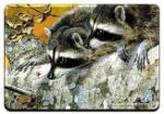 View details for this Raccoon Animal Magnet