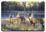 View details for this Deer Animal Magnet