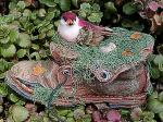 View details for this Finch nesting in Boot Figurine